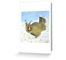 Greater Prairie Chicken Greeting Card