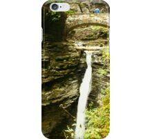 Watkins Glen State Park iPhone Case/Skin
