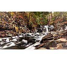Freezing Fall Photographic Print