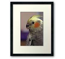Watcha Saying? Framed Print