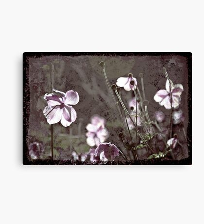 Pink Flowers with Textures Canvas Print