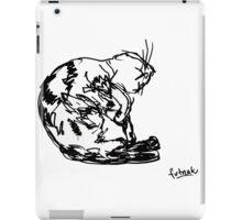 Cute sleeping cat iPad Case/Skin