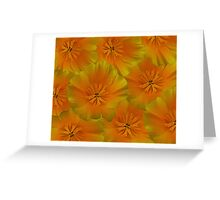 Poppy Flower Floral oil painting Greeting Card