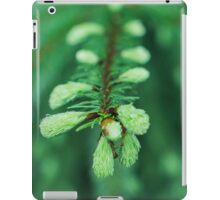 wet fir iPad Case/Skin
