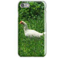 Hen in a Field iPhone Case/Skin