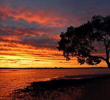 Sky on Fire by JLOPhotography