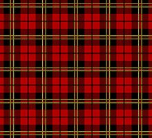 Clan Brodie Red Tartan by thecelticflame