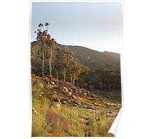 El Capitan Reservoir, San Diego County, California 3 Poster