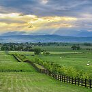 Colorado Country Fence to the Rockies by Bo Insogna