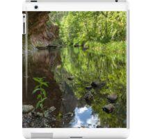 Reflected Serenity iPad Case/Skin