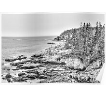 Acadia National Park in Black and White Poster