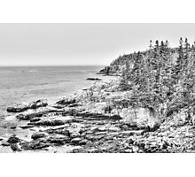 Acadia National Park in Black and White Photographic Print