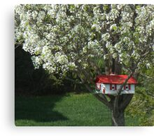 Cherry House Canvas Print