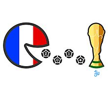 France World Cup 2014 Photographic Print
