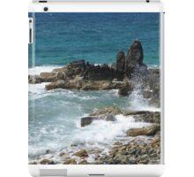 Caribbean coastal spray iPad Case/Skin