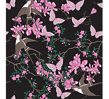 Oriental birds, flowers and butterflies Photographic Print