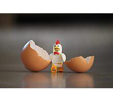 Chicken Run Photographic Print
