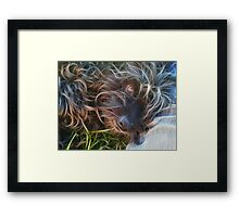 Life is Better with a Dog  Framed Print