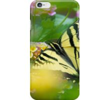 Western Tiger Swallowtail Butterfly  iPhone Case/Skin