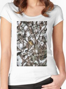 Friendly Freezing Women's Fitted Scoop T-Shirt