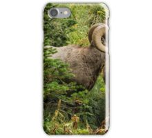 Two Rams iPhone Case/Skin