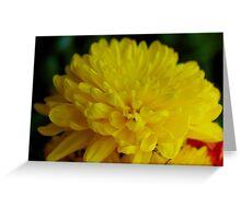 Yellow So Mello Greeting Card