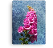Foxglove with texture reaching for the sky. Canvas Print