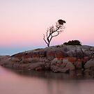 Peachy Sunset at Binalong Bay by Stephanie Johnson