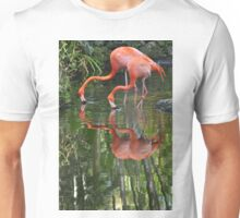 Flamingoes, As Is Unisex T-Shirt
