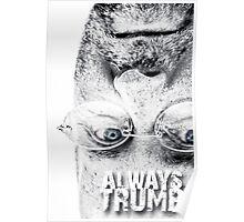 ALWAYS TRUMP Poster