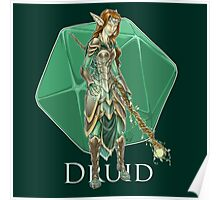 Dungeons and Dragons Druid Poster