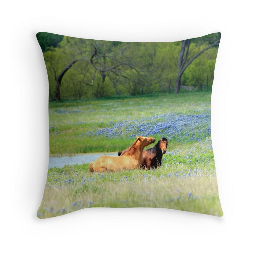 Decorative Pillows Horses :