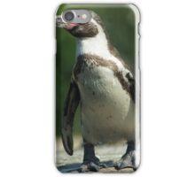 Posing Penguin iPhone Case/Skin