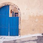 Arched Blue Door by Lesley Williamson
