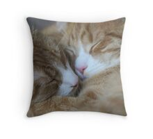 Brothers Touch Noises Throw Pillow