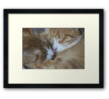 Brothers Touch Noises Framed Print