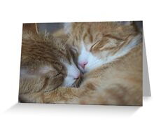 Brothers Touch Noises Greeting Card