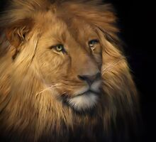 Portrait of a lion by Jan Pudney