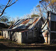 Wallace Hut 1 by Charles Kosina