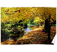 Autumn by the river Poster