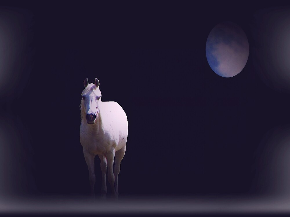 Horse with No Name by David Dehner