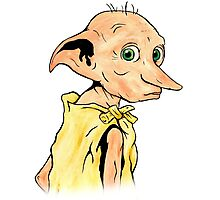 Dobby the House Elf Photographic Print