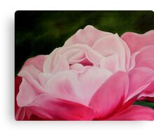 Pink Rose Macro Canvas Print