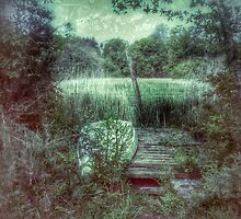 palude by CHINOIMAGES