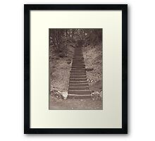 Long Stairs Framed Print