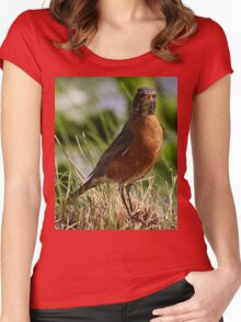 What are you looking at? Robin Bird Women's Fitted Scoop T-Shirt