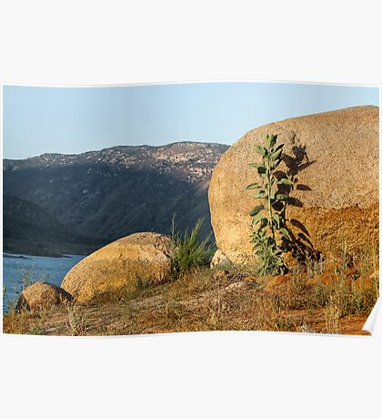 El Capitan Reservoir, San Diego County, California 5 Poster