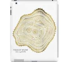 Peachleaf Willow – Gold Tree Rings iPad Case/Skin