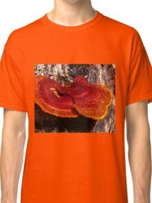 Guatemala Tree Fungus Classic T-Shirt