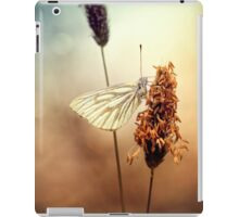 A Green-veined White (Pieris napi)...  iPad Case/Skin